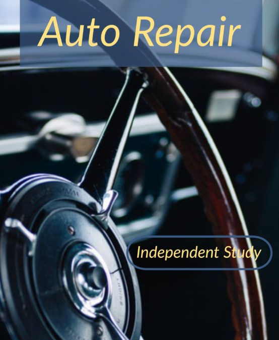 IS: Auto Repair Mini Credit